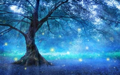 Spiritual things I learned from a tree